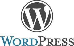 Stage de vacances : Je crée mon premier site Web avec WordPress
